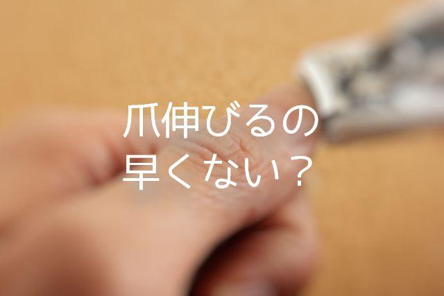 f:id:uenoyou111:20180704231549j:plain