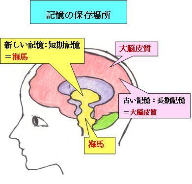 f:id:uenoyou111:20180708175318j:plain