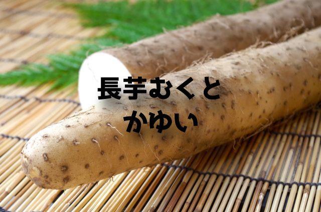 f:id:uenoyou111:20180713220530j:plain