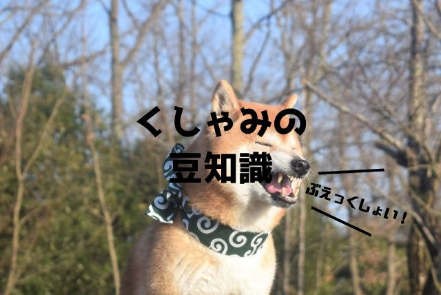 f:id:uenoyou111:20180716144129j:plain