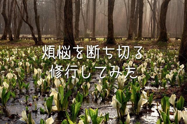 f:id:uenoyou111:20180716215025j:plain