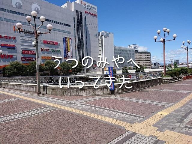 f:id:uenoyou111:20180818193506j:plain