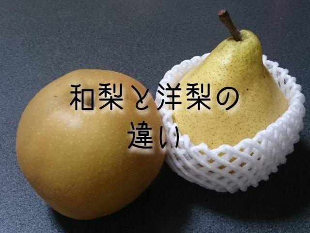 f:id:uenoyou111:20180924164423j:plain