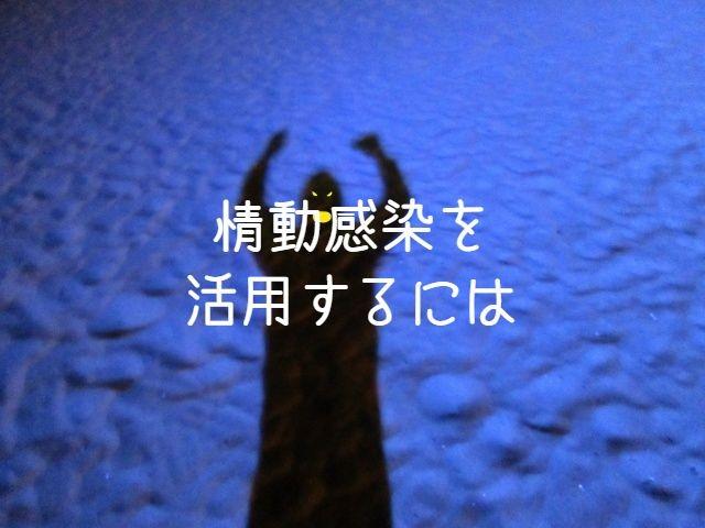 f:id:uenoyou111:20181020014330j:plain