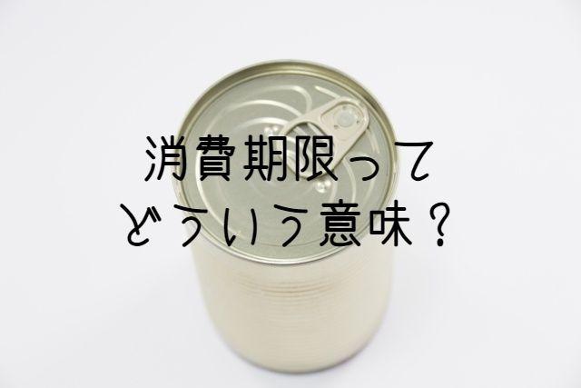 f:id:uenoyou111:20181021125258j:plain
