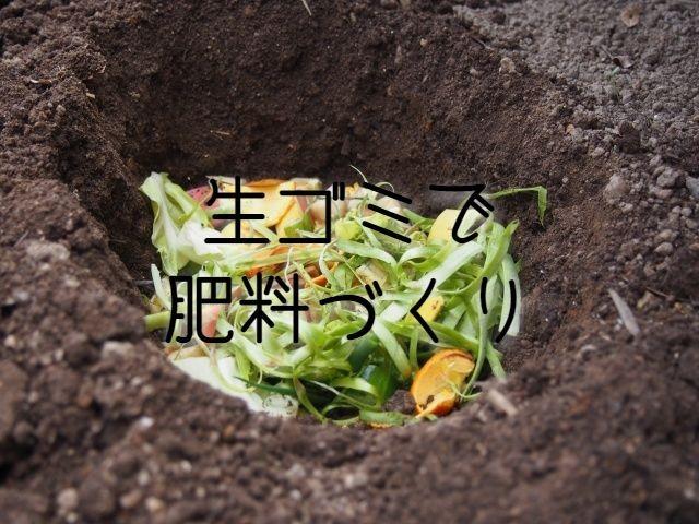 f:id:uenoyou111:20181104042256j:plain