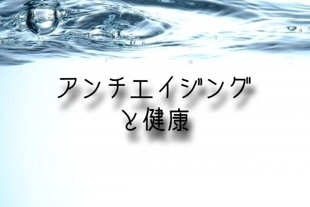 f:id:uenoyou111:20181216225401j:plain