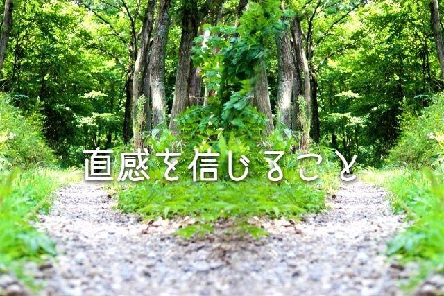 f:id:uenoyou111:20190105171506j:plain