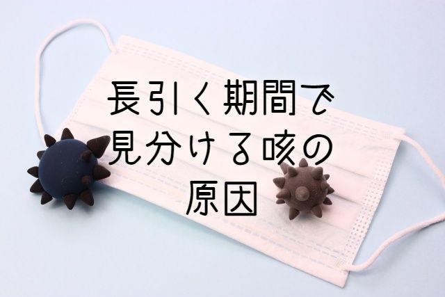 f:id:uenoyou111:20190117013741j:plain
