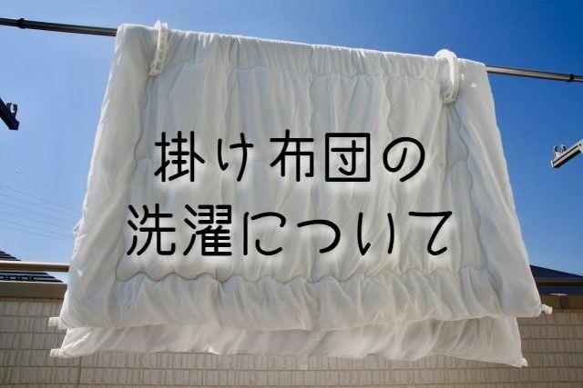 f:id:uenoyou111:20190131221713j:plain