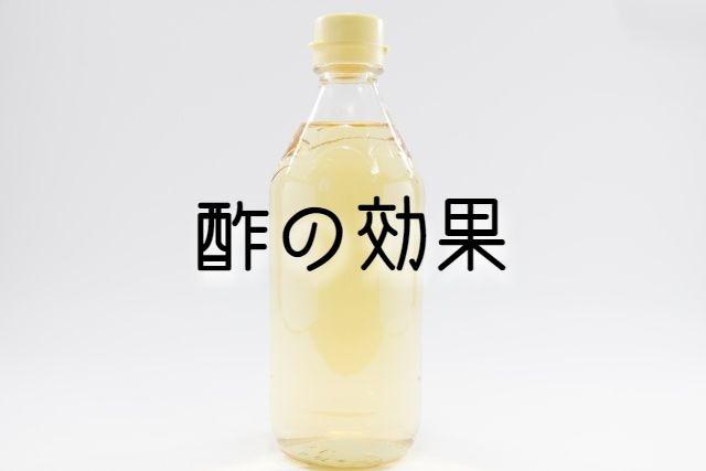 f:id:uenoyou111:20190206234031j:plain
