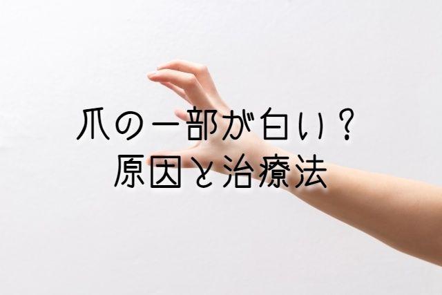 f:id:uenoyou111:20190212021103j:plain