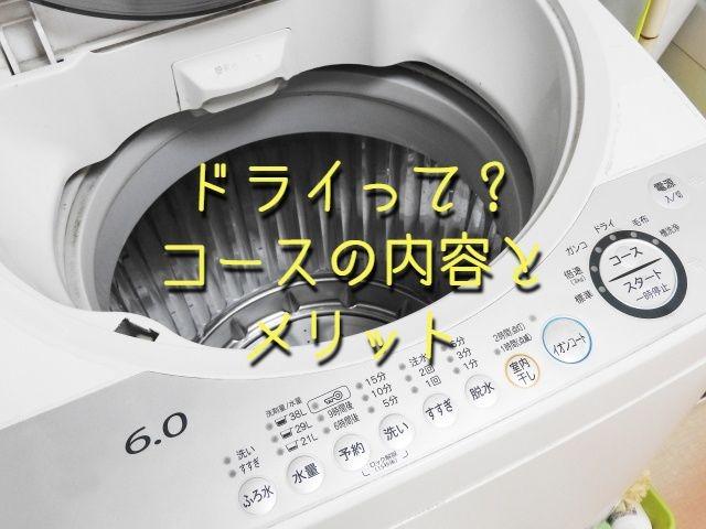 f:id:uenoyou111:20190216165321j:plain