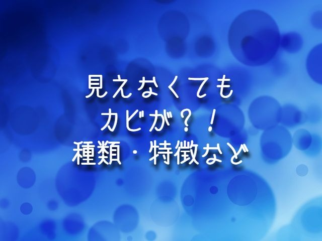 f:id:uenoyou111:20190218001037j:plain