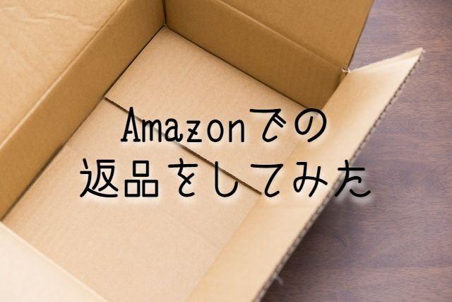 f:id:uenoyou111:20190224212635j:plain