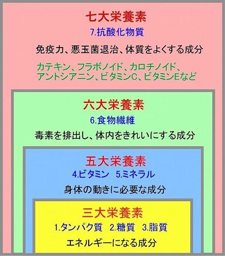 f:id:uenoyou111:20190325205053j:plain
