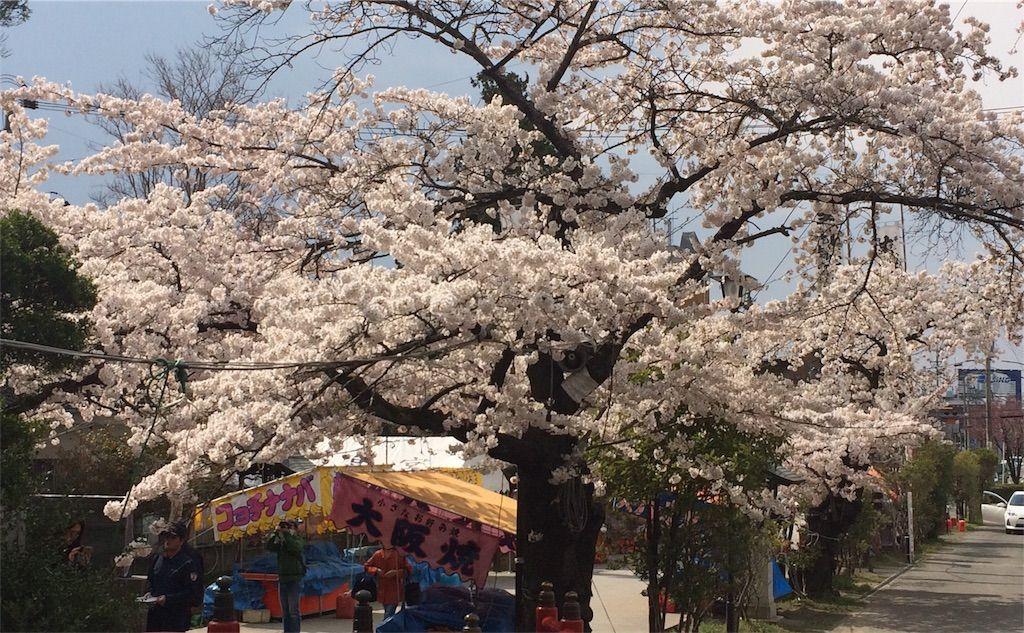 f:id:uesugi_rintaro:20170415102833j:plain