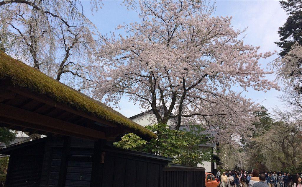 f:id:uesugi_rintaro:20170501065432j:plain