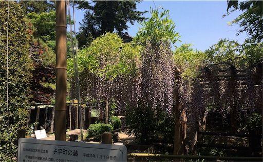 f:id:uesugi_rintaro:20170521153528j:plain