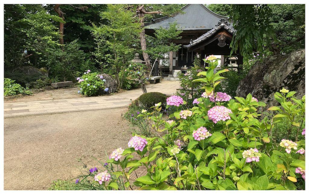 f:id:uesugi_rintaro:20180623103334j:plain