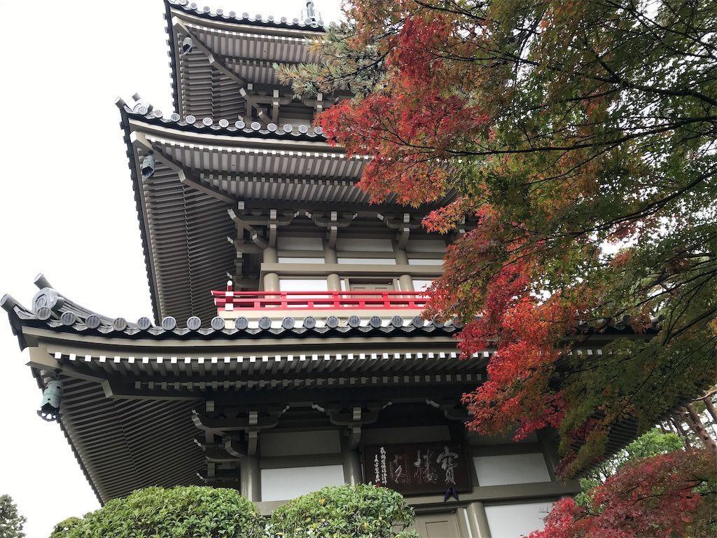 f:id:uesugi_rintaro:20181110124237j:plain