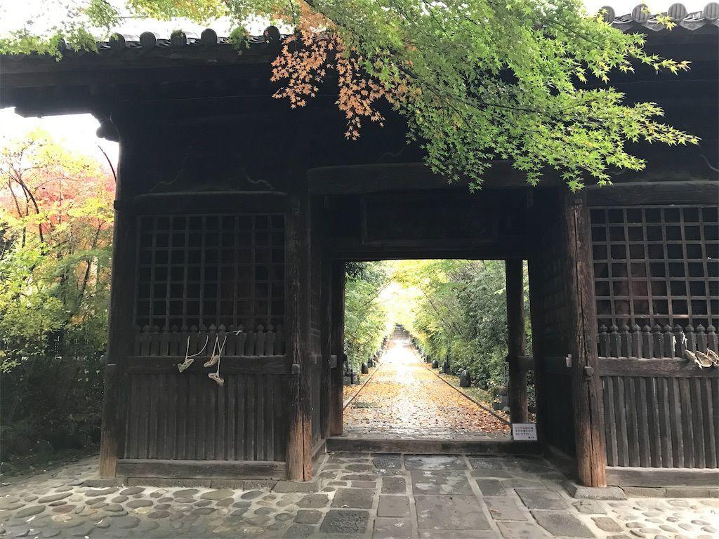 f:id:uesugi_rintaro:20181110124352j:plain