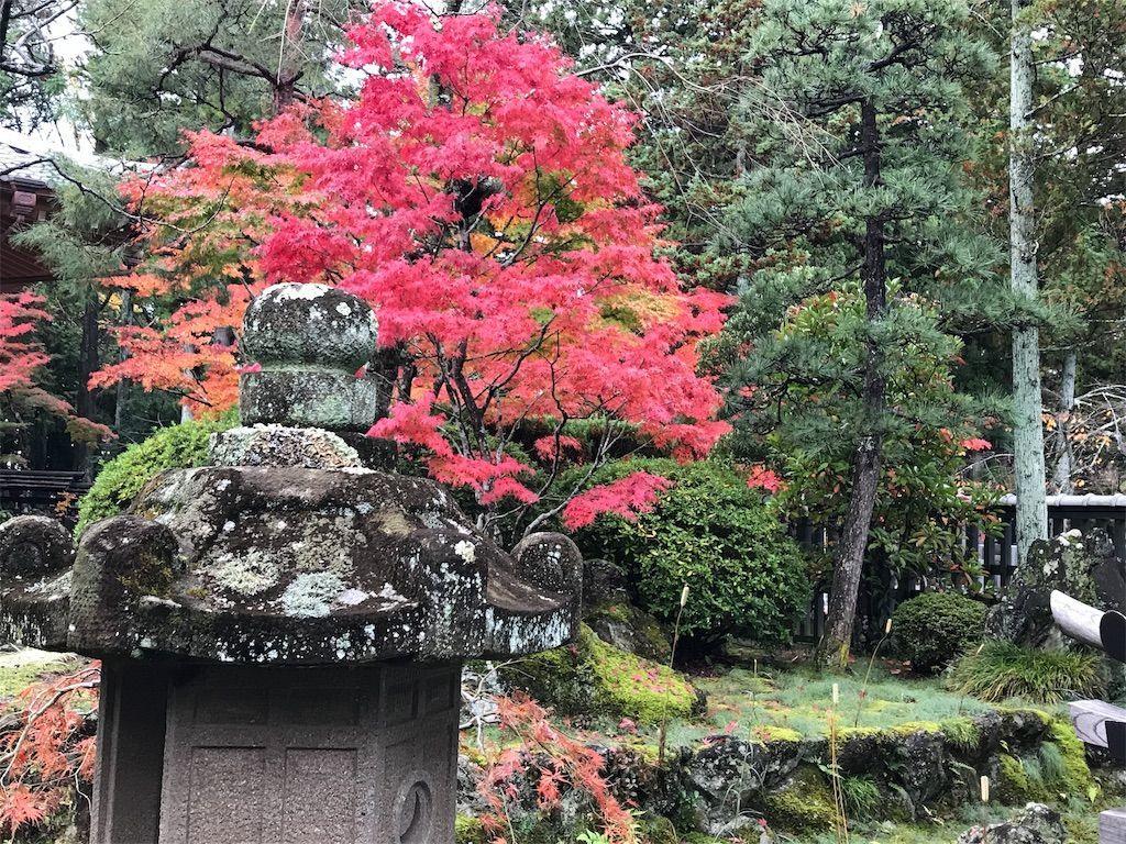 f:id:uesugi_rintaro:20181110124356j:plain