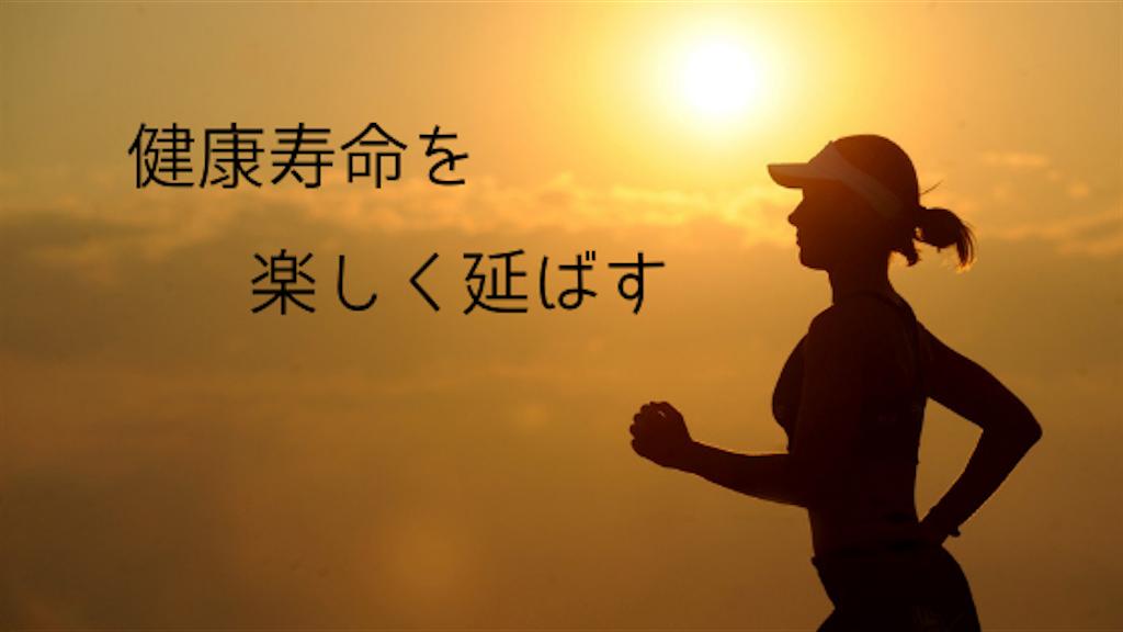 f:id:uesugi_rintaro:20181228204111p:plain