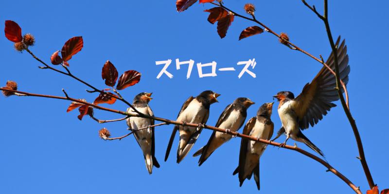 f:id:uesugi_rintaro:20190616053547p:plain