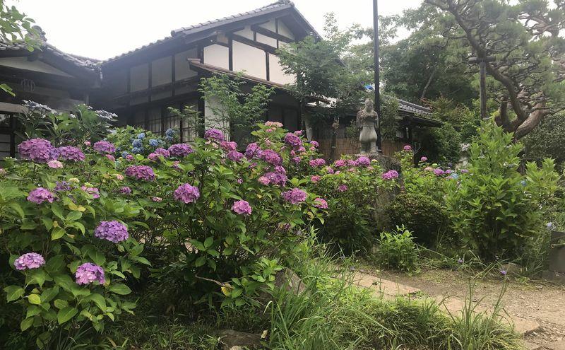 f:id:uesugi_rintaro:20190705100932j:plain