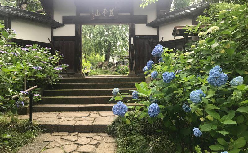 f:id:uesugi_rintaro:20190705101212j:plain