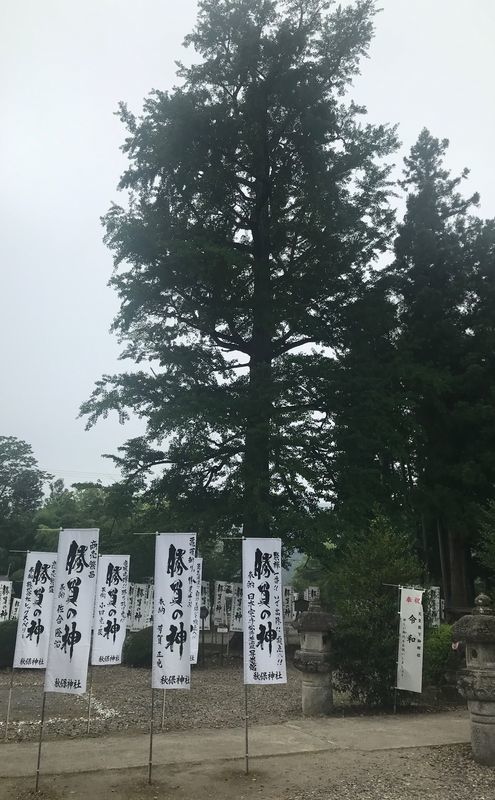 f:id:uesugi_rintaro:20190804090321j:plain