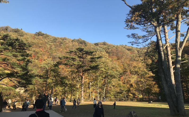 f:id:uesugi_rintaro:20191102153116j:plain