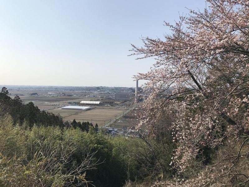 f:id:uesugi_rintaro:20200404083931j:plain