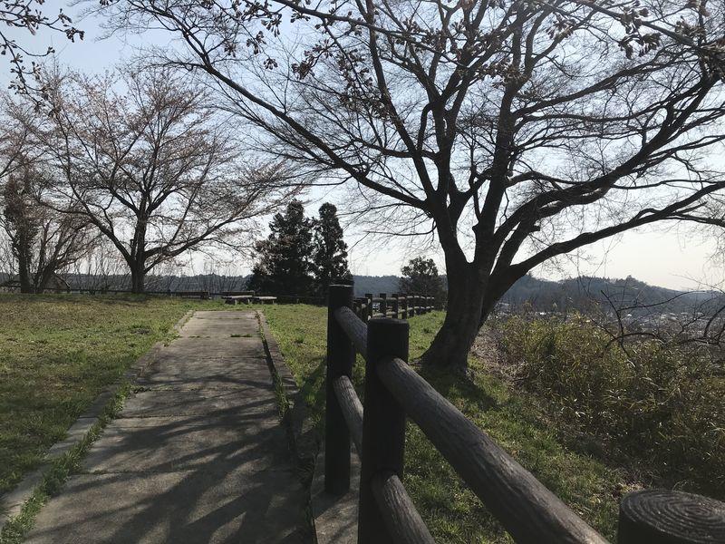 f:id:uesugi_rintaro:20200404083938j:plain
