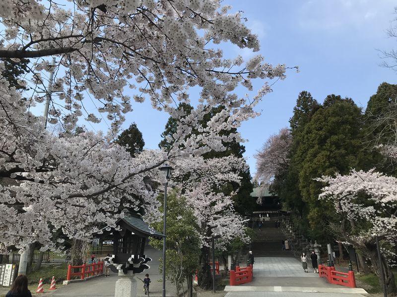f:id:uesugi_rintaro:20200404145103j:plain