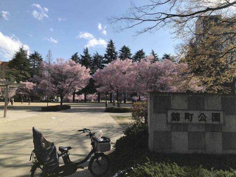 f:id:uesugi_rintaro:20200405151530j:plain