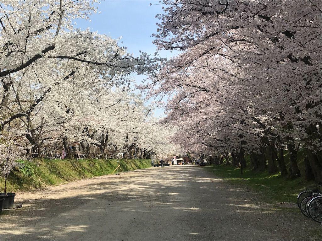 f:id:uesugi_rintaro:20210427064308j:plain