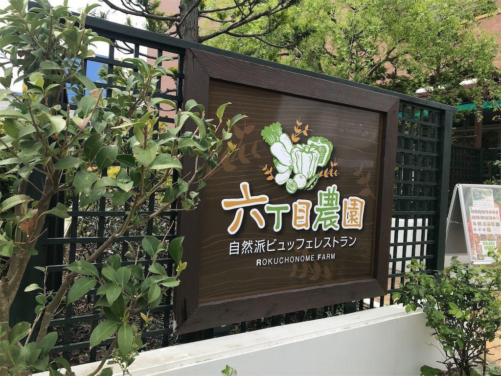f:id:uesugi_rintaro:20210506205147j:plain
