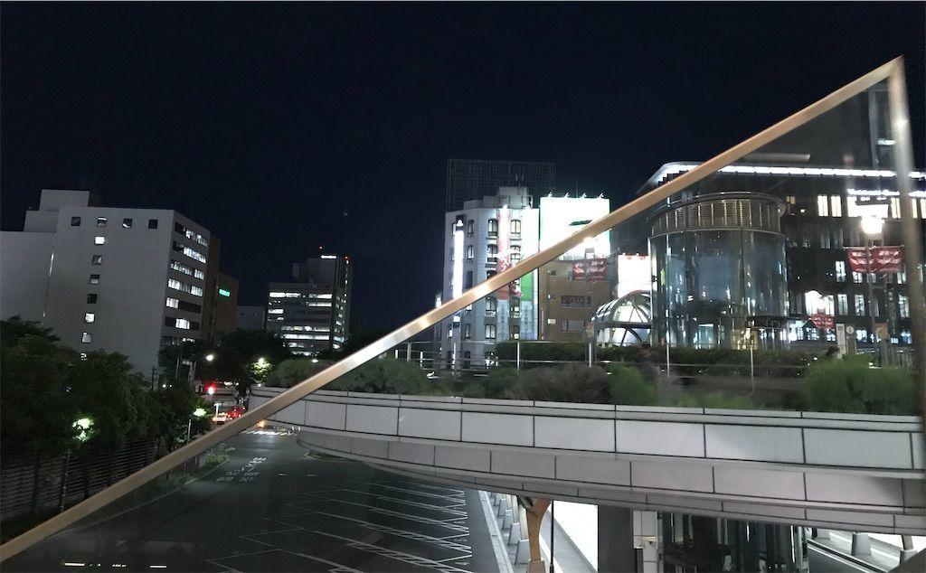 f:id:uesugi_rintaro:20210529075054j:plain