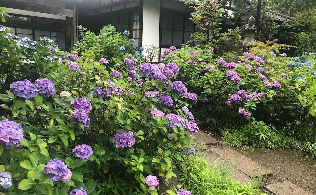 f:id:uesugi_rintaro:20210703063100j:plain