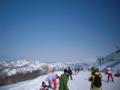 [スキー]
