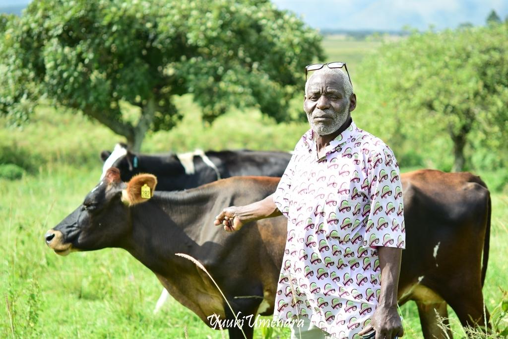 f:id:ugandacowcowdiary:20181205071633j:plain