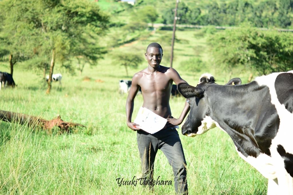f:id:ugandacowcowdiary:20181211053831j:plain