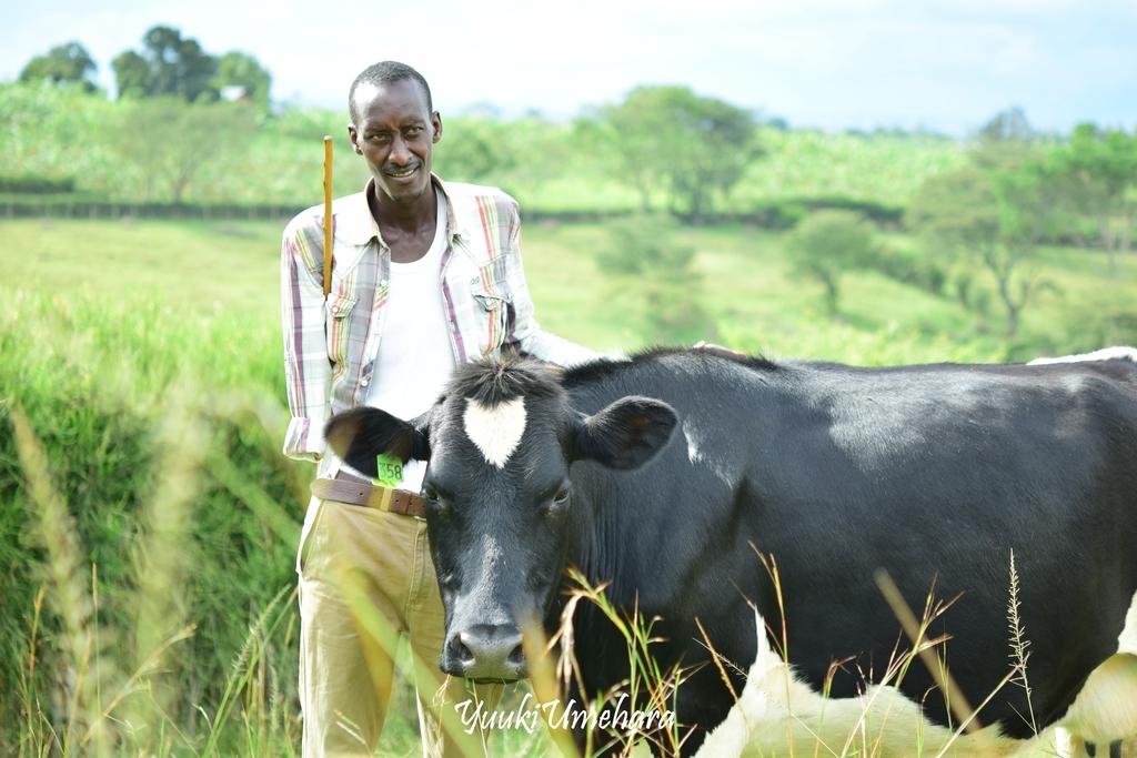 f:id:ugandacowcowdiary:20181211054042j:plain