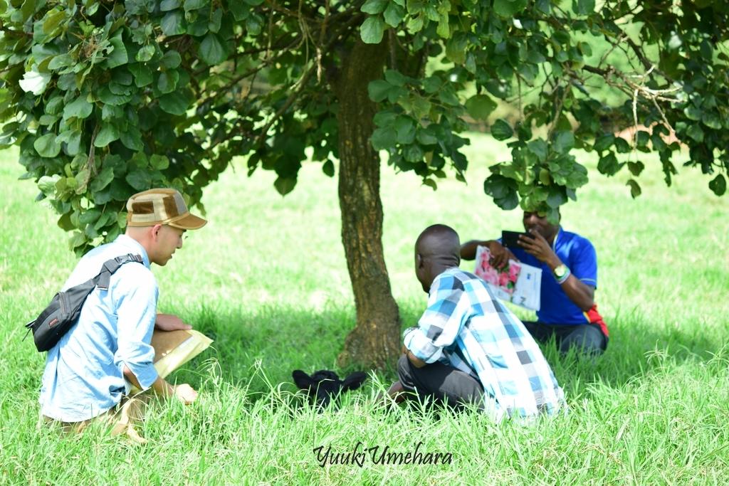 f:id:ugandacowcowdiary:20181211060449j:plain