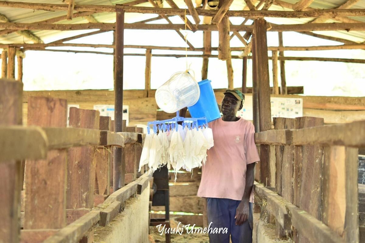 f:id:ugandacowcowdiary:20190314113558j:plain