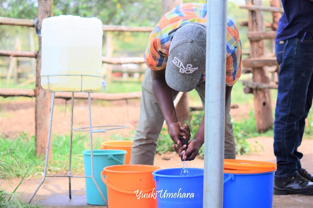 f:id:ugandacowcowdiary:20190314114642j:plain