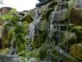 館内の自然(京都水族館)