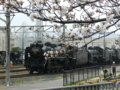 桜とD51-200
